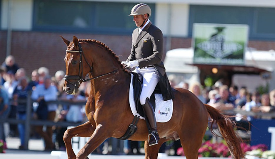 President's First Appel finishes fourth at the 2017 World Young Horse Championships :: Photo © Astrid Appels