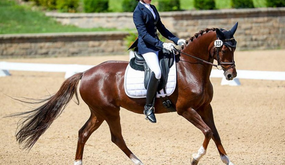 Lucienne Bacon and Bonnaroo win the pony team test at the 2019 U.S. Dressage Championships :: Photo © Sue Stickle
