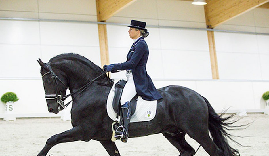 Patricia Mannaerts and Doeke fan Beritsum at the 2018 European Friesian Championships :: Photo © Digishots