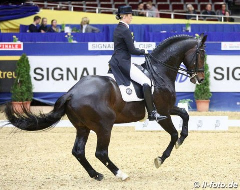 Bernadette Brune on Spirit of the Age OLD (by Stedinger) scored points with their very nice extended walk and pirouettes. The passage could have been a bit more engaged from behind and the piaffe with the hindlegs more under the body.