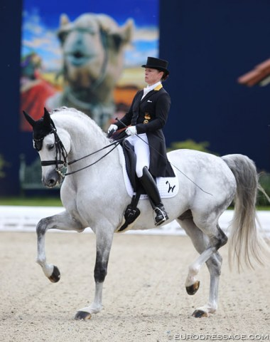 Isabell Werth on Belantis. The popular breeding stallion still looked green at Grand Prix. With his long back and soft loins it is not the easiest for him to engage the hindlegs in passage. Still work in progress