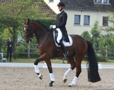 Sönke Rothenberger warming up his rising Grand Prix horse Santiano R