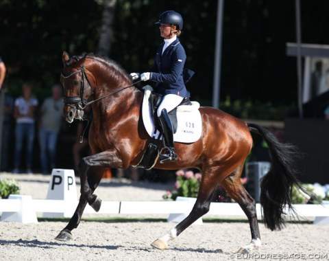 Adelinde Cornelissen on the Gelderlander bred Henkie (by Alexandro P x Upperville). The powerful mover showed strong trot work but there was major resistance in the first flying change which dropped the submission score