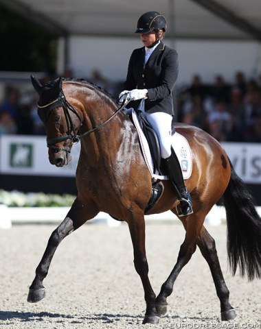 Dorothee Schneider on Sisters Act von Rosencarree (by Sandro Hit x Royal Diamond). Schneider rode two horses in the final, her student one. All three of those horses are owned by Sissy Max-Theurer!