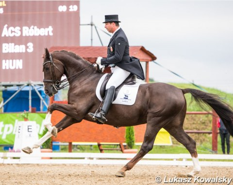 Hungarian Grand Prix rider Robert Acs back in the saddle of small tour horse Bilan, after lending him out for one show season to Hungarian junior Hanna Ivan