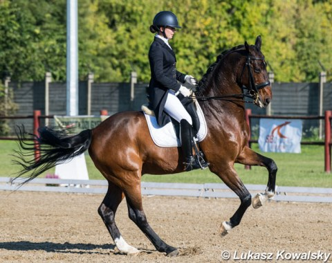 Gabrielle Erdi on Jazmin Yom-Tov's Grand Prix schoolmaster Sierappel, a 19-year old Dutcj warmblood by Montecristo x Flemmingh