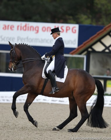 Insa Hansen on the PSI Auction horse Rebroff, a Rhinelander by Robespierrot x Oula Owl xx bred in Belgium by Yves Gielen