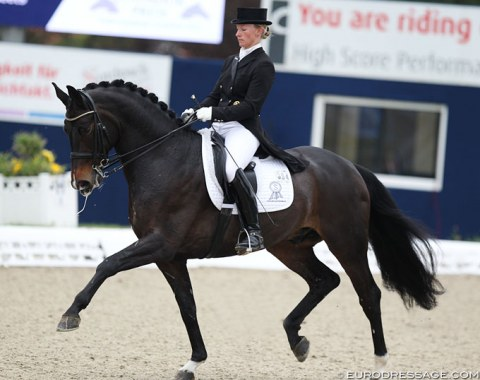 Nicole Wego on Lux Dressage's Status Royal (by Statesman x Rubin Royal)