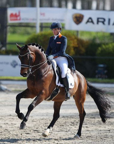 Danielle Heijkoop on Badari (by Gribaldi). This 13-year old KWPN gelding has amazing trot half passes, but in the piaffe he stays too earthbound.