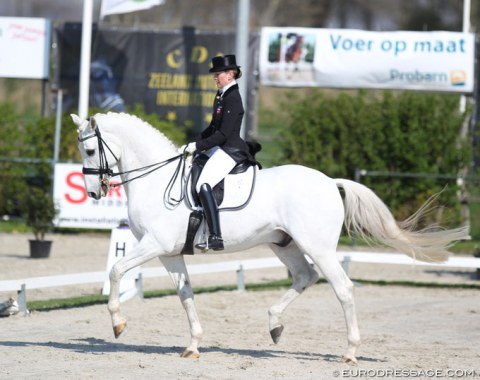Danish duo Mai Tofte Olesen and the 17-year old Danish bred Rustique (by Heslegards Rubin x Midt West Ibi Light)