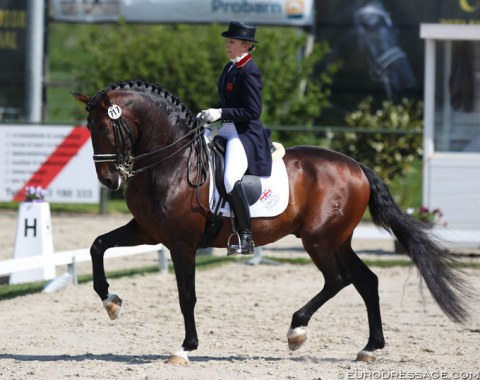 Vicky Thompson Winfield on the 14-year old Iberian bred Mango Jacaro (by Rondeo)