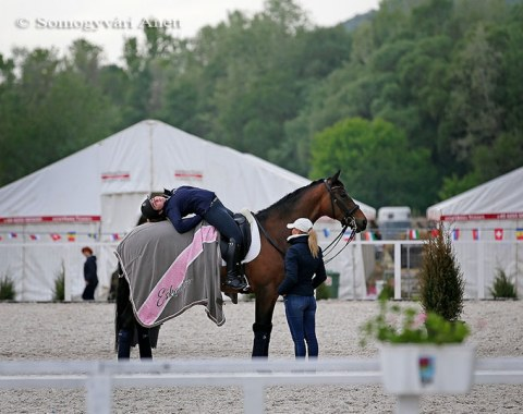 Stretching for rider and horse