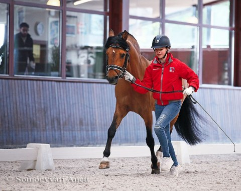 Swiss Antonia Winnewisser trotting up her pony