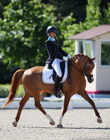 Portuguese based Italian Lisa Bartz on Derano B, a pony with a very strong trot