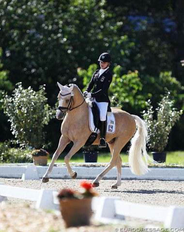 Paulina von Wulffen on Dujardin B, a palomino with a stunning canter