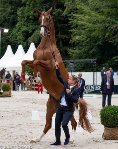 Isabell Werth's Bella Rose is frisky and ready to go for her first European Champion's title in Rotterdam