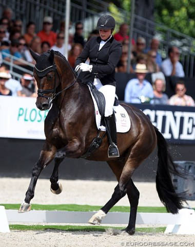 Ann-Christin Wienkamp on the Danish bred Lindballe's Just Perfect. The horse has changed dramatically over the past year and become much more athletic. There was a great rhythm in the trot work and a very good walk, in canter he gets croup high, but is very obedient throughout