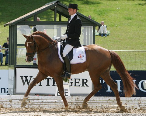 Scandic (by Solos Carex x Amiral) - Shown in Verden by Dutch Remy Bastings, went on to win kur bronze with Patrik Kittel at the 2011 European Dressage Championships in Rotterdam