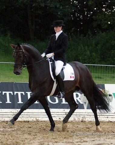 Florianus (by Florestan x Damenstolz) - Shown in Verden by Gillian Duke. Sold to the U.S.A and competed there at international GP level by Belinda Nairn and Catherine Malone