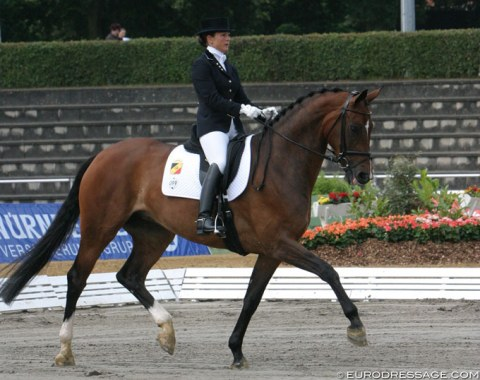 Daianira van de Helle (by Dream of Glory x Ritual) - Shown in Verden by Belgian Vicky Smits. She trained and competed the mare from young horse to international Grand Prix level. A legal battle and injury ended the career of both horse and rider. Smits has not competed at a CDI since Daianira