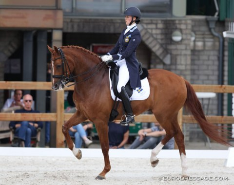 British based Swedish Nathalie Wahlund on Ian Winfield's 13-year old KWPN gelding Cerano Gold (by Serano Gold)