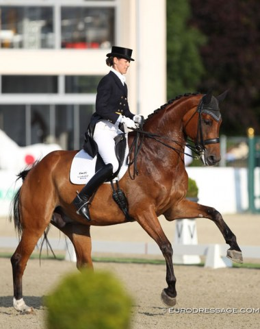 A pair to watch for the future: Petra van Esch on Fiji (by Florencio x Climax). The canter is very uphill and the horse has a nice silhouette in passage but needs more regularity, piaffe still insecure and tense.
