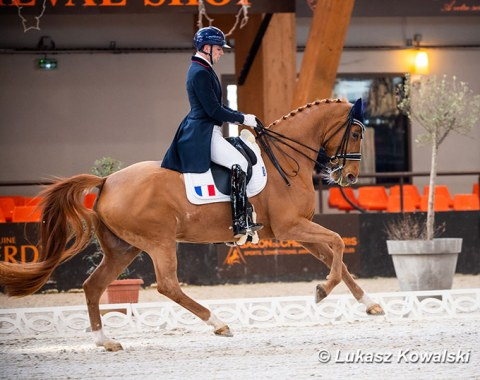 Jean Philippe Siat on Lovesong (by Locksley II x Wolkenstein II)