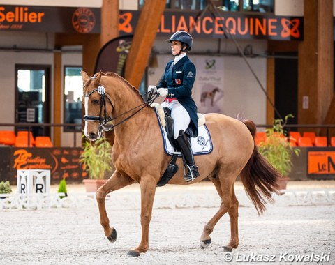 Antonella Joannou on Dandy de la Roche (by Dressage Royal x Walt Disney)