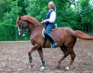 Angelika training her Grand Prix horse Gustav at home