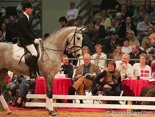Berit Nielsen bought Donna Silver at the 2006 Danish warmblood aution in Herning