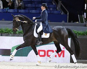 Best Belgian pair: Claudia Fassaert on Donnerfee: 69.915%