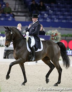 French Gilles Siauve on the Belgian warmblood stallion Windsor van 't Dashaegeveld (by Ferro x Galoubet)