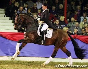 Hermann Burger on Florenciano (by Florencio x Havidoff). The spitting image of his sire with an equally fantastic canter. At the parade the 7-year old showed little collection in his gaits, though.