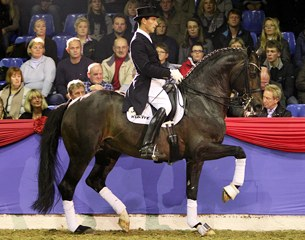 Markus Gribbe on the Westfalian Farewell III (by Fidermark x Rosenkavalier). This horse has developed himself into a very solid Grand Prix horse with beautiful, regular piaffe and passage work