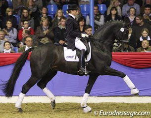 Jennifer Hoffmann on the Westfalian Rubinio B (by Rubin Royal x Florestan). This dark bay has developed into a very impressive stallion: well muscled, much rhythm & swing in trot, uphill in canter, big in walk but the rhythm was not very clear