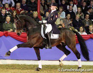 Sophie Holkenbrink on Rock Forever (by Rockwell x Landstreicher). The bay stallion is usually ridden by Oliver Oelrich but Sophie took over for the Parade. Though not always on the same wavelength, Rock Forever showed some impressive ground cover