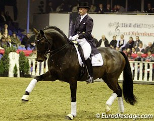 Silke Tietjen on Royal Doruto  (by Royal Hit x Rubinstein). Very well trained, not the strongest behind, but a lovely dressage horse