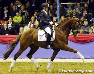 Philip van Ommen on the Dutch warmblood stallion Chagall (by Jazz x De Niro x Romancier). Beautiful modern stallion, very impressive in trot but lateral in canter