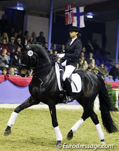 Wanda Wespe on Rubin Royal (by Rohdiamant x Grundstein II). The 20-year old had problems sitting the massive gaits of this fantastic stallion, which is a valuable sire in the Oldenburg area.