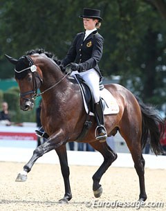 Belgian Larissa Pauluis on Don Massimo (by Don Larino x Santander H). Super elegant horse but he was spooky and tense in walk (got a too low 5.0 for walk) and canter. Not enough lightness. Pity