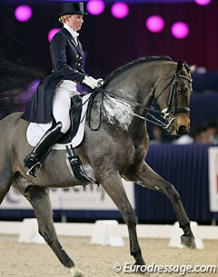 Lynn Maiburg on her long legged 14-year old Belgian warmblood Tumbling Rocky (by Fortuin Z x Feinschnitt)