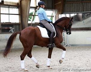 Marcela and her upcoming Grand Prix horse Lazander