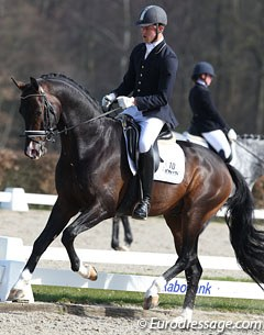 Lennart Bos on the gorgeous Crespo (by Vivaldi x San Remo). The bay stallion still needs to gain in strength behind and has a tendency to be more active behind with his right leg. He had a very good walk with much overstep