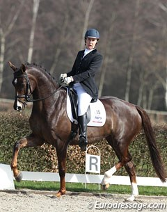 Karen Galema on the attractive liver chestnut mare Cadassa (by Johnson x Negro). The mare was all over the place, very unruly in the contact. The trot was quite hackney-like with more lift than stretch, but Cadassa is a talented star for the future!