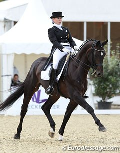 Steffi Hesters on Don Fuego (by Don Bedo x Fidermark). The Westfalian licensed stallion was previously owned by Americans Heather Kenndy and Alexandra Curnotte and sold to Hesters in the autumn of 2010.