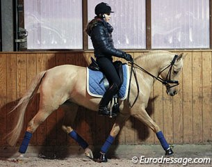 Anastasia Huet training Day of Diva for the fourth time at Jeroen Devroe and Carmen de Bondt's stable in Belgium