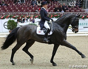 Sarah Millis on the Australian bred HP Frontier