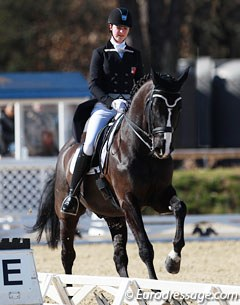 Stephanie Hartmann on Darek CH (by Dressage Royal x Capo)