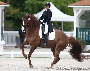 French Emilie Pelican on the 10-year old Hanoverian gelding Sir Diamant (by Don Romantic x Rohdiamant)