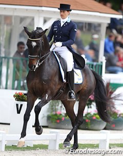 Tinne Vilhelmson has been successfully campaigning Paridon Magi this 2017 show season while her number one Don Auriello has not been out since the 2016 Rio Olympics